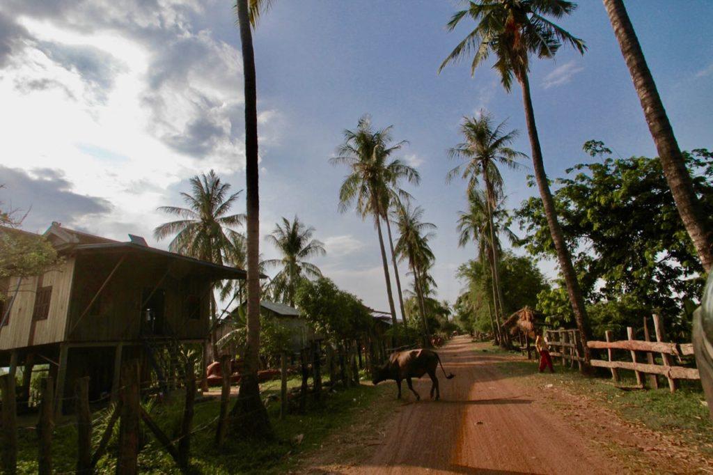 Aldea en Camboya ¿Cuál es la mejor época para viajar a Camboya?