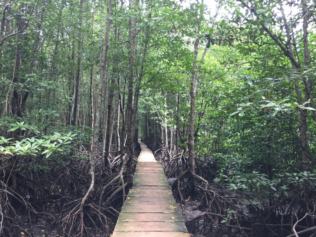 Mayte en Camboya
