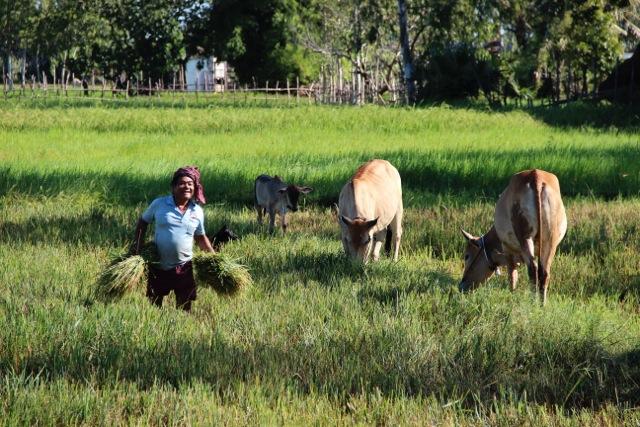 Gloria, Almudena, Julia, y Lourdes viaje en Camboya