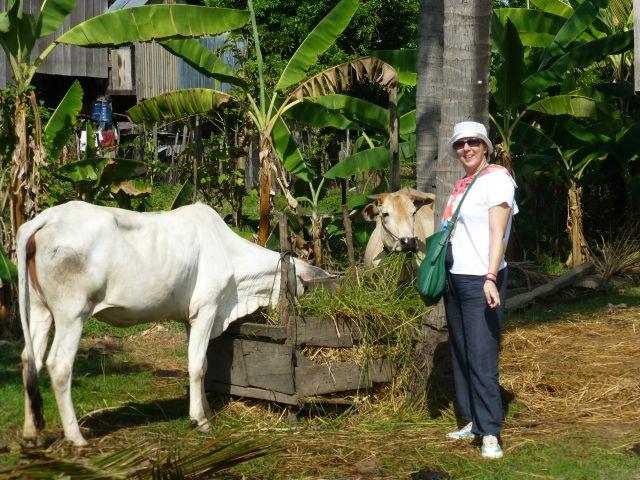 Ana en su viaje a Camboya