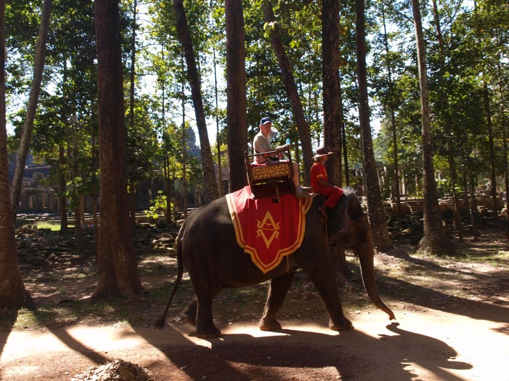 En elefante en Camboya
