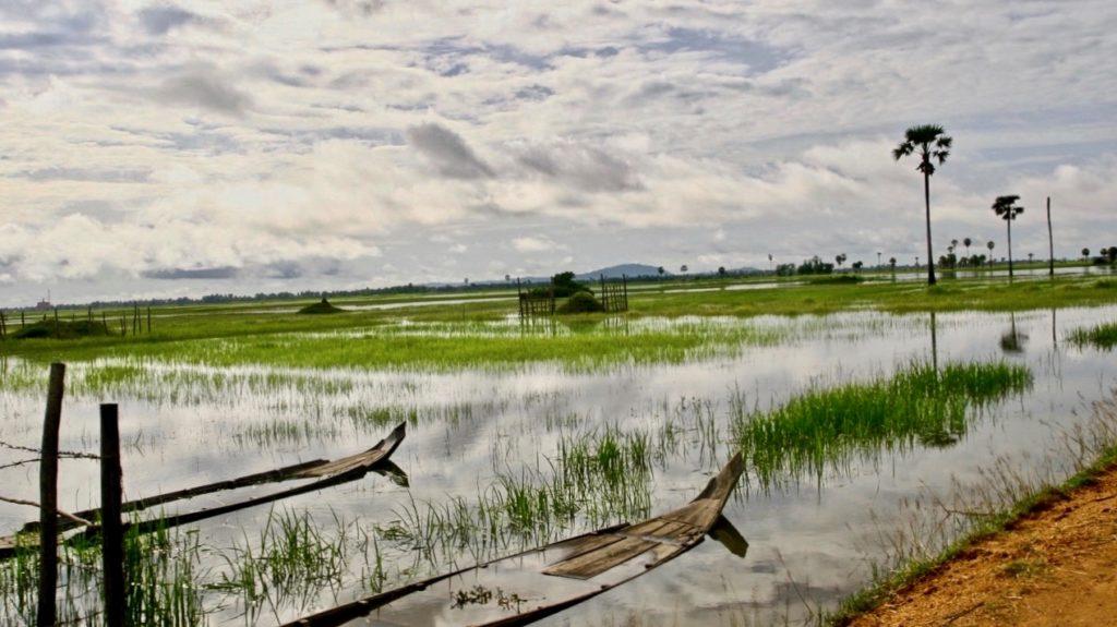 Viajar a Camboya paisaje